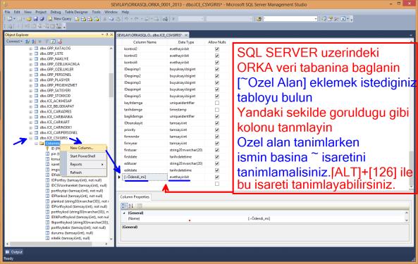 ORKASQL_ozel_alan_tanimi_01